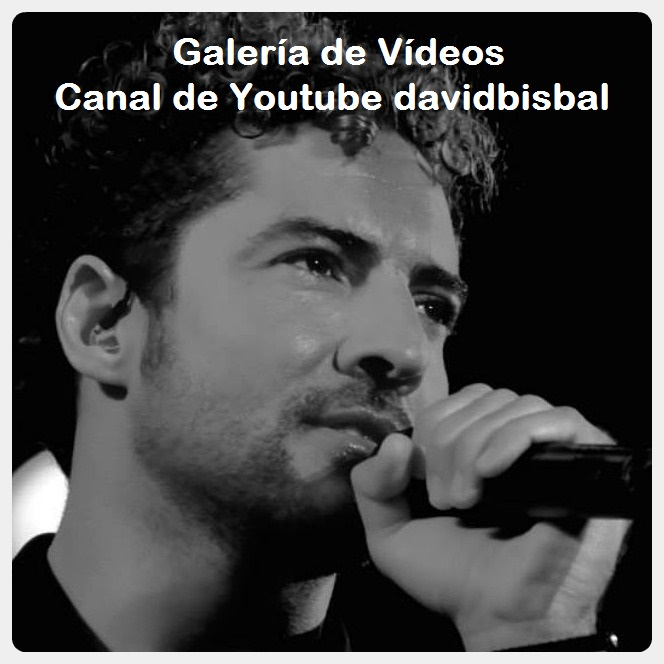 Galería Videos davidbisbal